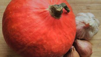 1 pumpkin, 2 shallots, 1 garlic bulb
