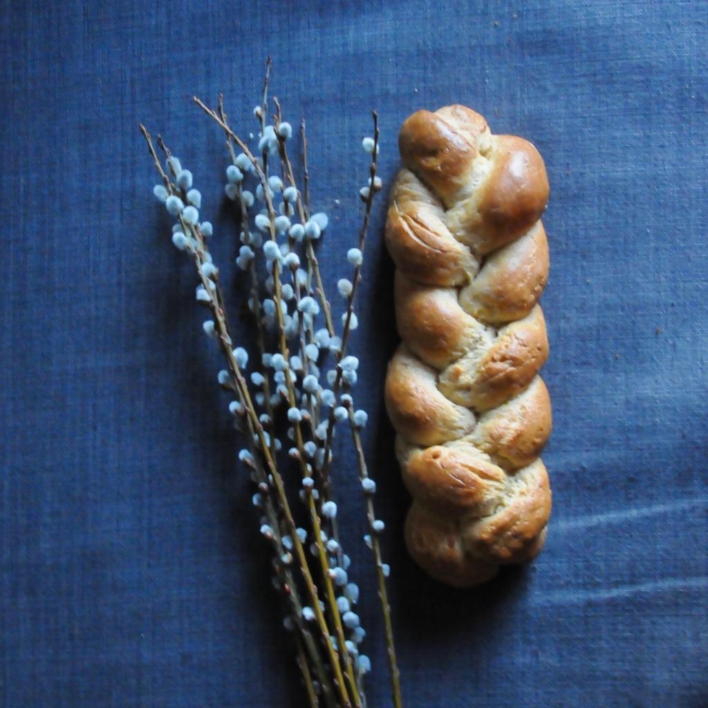 yeast braid next to pussy willow