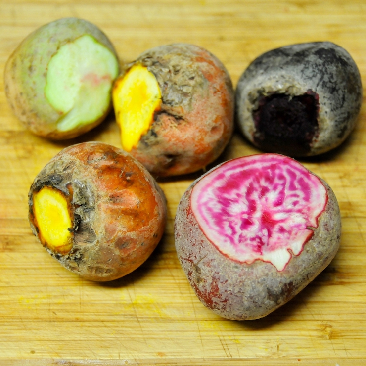 Beets with the tops cut off to reveal their colours, red, yellow and candy cane beetroots