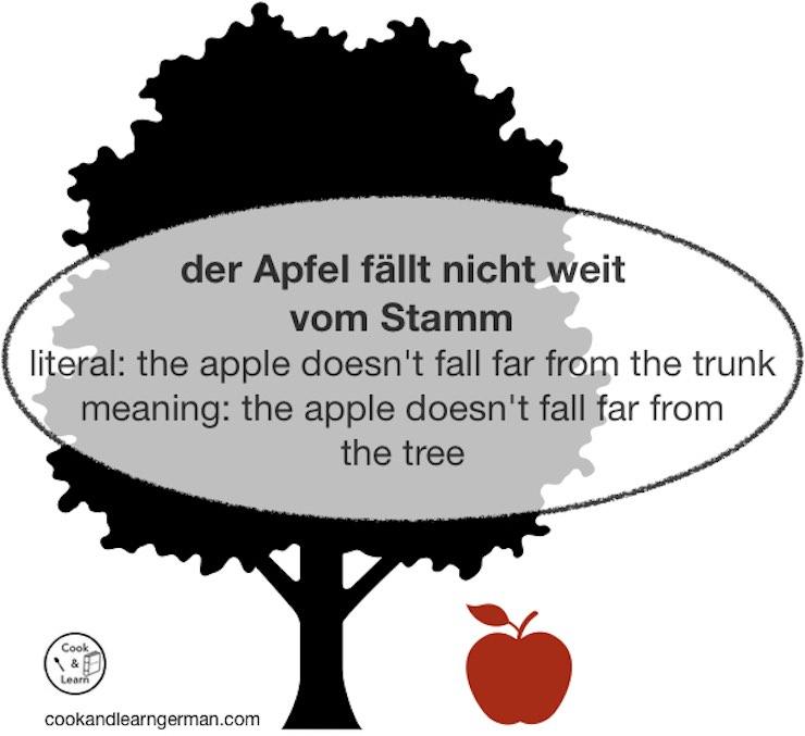 Der Apfel fällt nicht weit vom Stamm - literal: the apple doesn't fall far from the trunk - meaning: the apple doesn't fall far from the tree