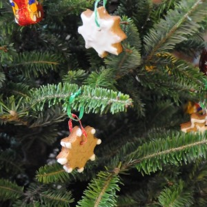 Decorated German gingerbread cookies hanging on a christmas tree