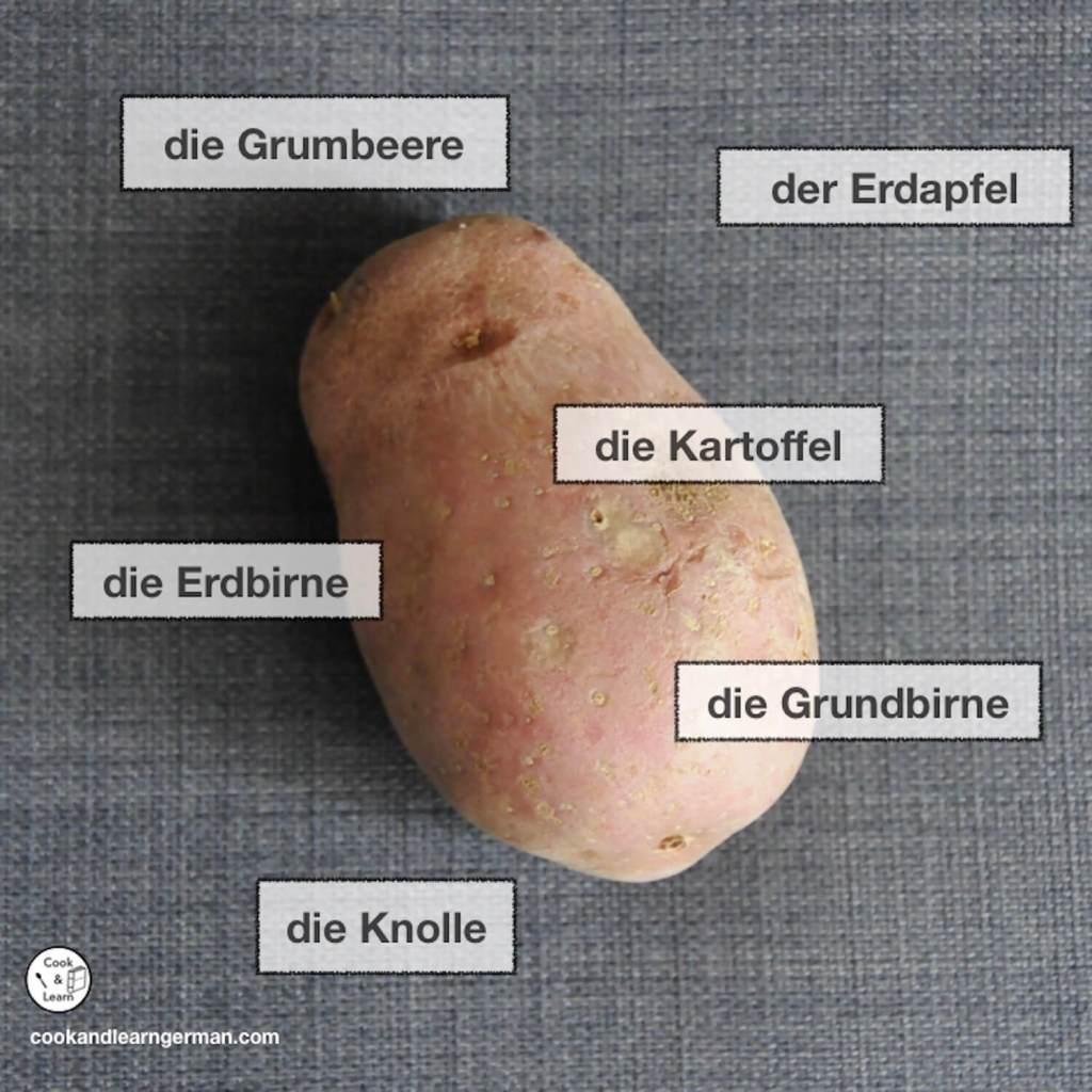 """Pic of a potato and German regional names for potato: """"die Kartoffel, die Grumbeere, der Erdapfel, die Erdbirne, die Grundbirne, die Knolle'"""